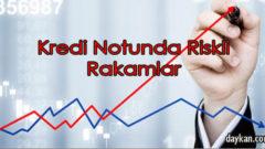 Kredi Notunda Riskli Rakamlar