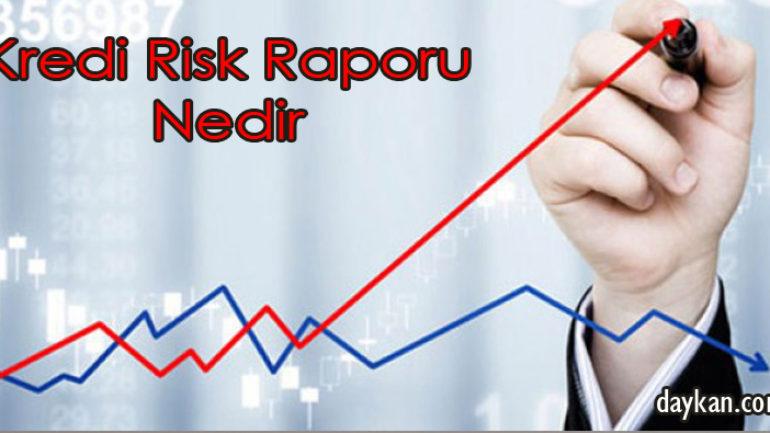 Kredi Risk Raporu Nedir?