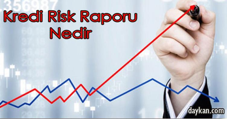 Kredi Risk Raporu Nedir
